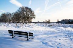 Invierno en Holanda imágenes de archivo libres de regalías
