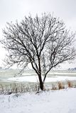 Invierno en Holanda Imagenes de archivo