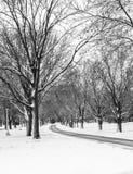 Invierno en Iowa Foto de archivo