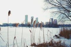 Invierno en Kiev Foto de archivo libre de regalías