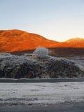 Invierno en la cañada Garry, Escocia foto de archivo libre de regalías