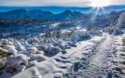Invierno en la montaña de Tatras Imagenes de archivo