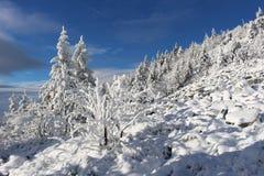 Invierno en las montañas fotos de archivo