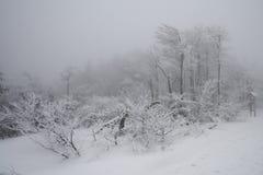 Invierno en las montañas de Beskydy Fotos de archivo