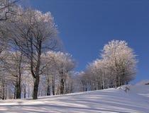 Invierno en las montañas de Ciucas Foto de archivo libre de regalías
