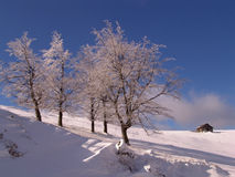 Invierno en las montañas de Ciucas Imágenes de archivo libres de regalías