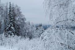 Invierno en las montañas de los Urales meridionales Foto de archivo
