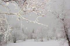 Invierno en las montañas de Ural imagenes de archivo
