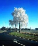Invierno en Luxemburgo Fotos de archivo libres de regalías
