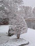 Invierno en Michigan Imagen de archivo libre de regalías