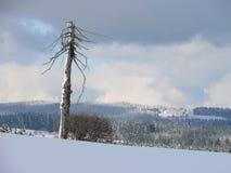 Invierno en montaña Fotografía de archivo