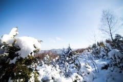 Invierno en montaña Imagen de archivo libre de regalías