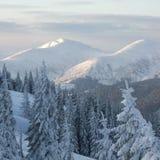 Invierno en montañas Foto de archivo libre de regalías