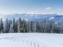 Invierno en montañas cárpatas Foto de archivo