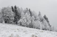 Invierno en montañas en día cubierto de niebla Fotos de archivo