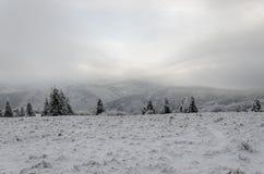 Invierno en montañas en día cubierto de niebla Fotografía de archivo libre de regalías