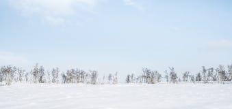 Invierno en Noruega Imagen de archivo libre de regalías