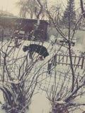 Invierno en país foto de archivo libre de regalías