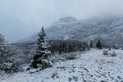 Invierno en parque del glaciar imágenes de archivo libres de regalías