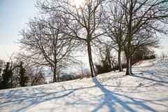 Invierno en Piamonte, Italia Foto de archivo libre de regalías