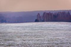Invierno en Polonia Fotografía de archivo