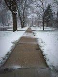 Invierno en primavera foto de archivo