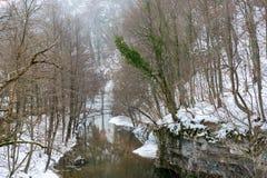 Invierno en Rumania fotos de archivo