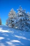 Invierno en Serbia Zlatibor 2017 Fotografía de archivo libre de regalías