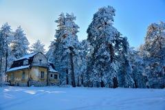 Invierno en Serbia Zlatibor 2017 Imagen de archivo libre de regalías