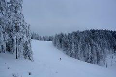 Invierno en Serbia Zlatibor 2017 Foto de archivo libre de regalías