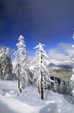 Invierno en Spindlerov Mlyn Imagenes de archivo
