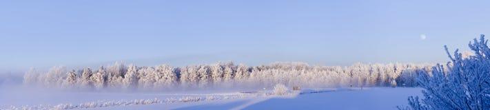 Invierno en Suecia Imágenes de archivo libres de regalías