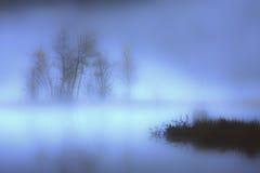 Invierno en un pantano en la montaña de los Vosgos Imagen de archivo libre de regalías