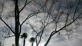 Invierno en Vegas fotografía de archivo libre de regalías