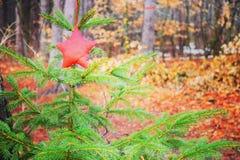 Invierno en Wisconsin Fotografía de archivo