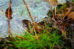 Invierno en Wisconsin Imagen de archivo libre de regalías