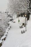 Invierno extremo en Europa imagen de archivo