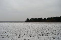 Invierno field fotografía de archivo