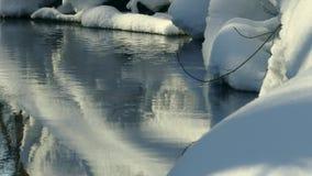Invierno Forest Creek metrajes