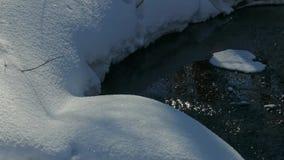 Invierno Forest Creek almacen de video
