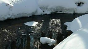 Invierno Forest Creek almacen de metraje de vídeo