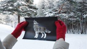Invierno Forest Through Wolf Shape Cut hacia fuera del papel amarillo Concepto de Forest Dwellers Fotos de archivo libres de regalías