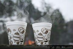 Invierno, frío, al aire libre, té caliente Foto de archivo