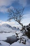 Invierno, Glen Coe Foto de archivo