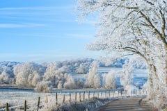 Invierno hermoso Fotografía de archivo