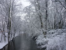 Invierno hermoso Imagen de archivo libre de regalías