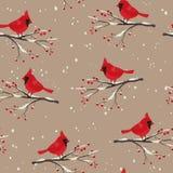 Invierno hermoso del pájaro cardinal inconsútil Imagen de archivo