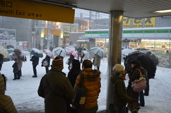 Invierno japonés Fotos de archivo