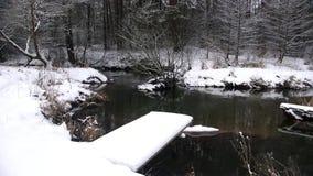Invierno mágico Charca del río Hermoso almacen de metraje de vídeo