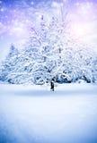 Invierno mágico Fotografía de archivo libre de regalías